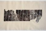 Gota 17 - 2009 - collage acrílico sobre tela - 36 x 65 cm.