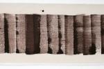 Espatulomancia VII - 2010 - acrílico sobre tela - 20 x 60 cm
