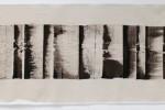 Espatulomancia XXI - 2010 - acrílico sobre tela - 40 x 120 cm