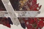 Gota 22 detalle - 2013 - acrílico sobre tela - 50 x 70 cm